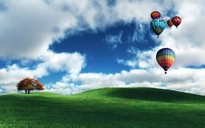 воздушные, шары, облака, поле, дерево
