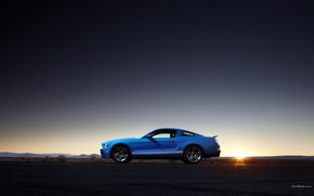 Shelby, GT500, Auto, macchinario, auto