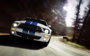 Shelby, GT500, авто, машины, автомобили