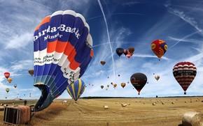 воздушные шары, поле, небо