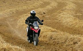 Derbi, Off-Road, Terra 125, Terra 125 2008, Moto, Motorcycles, moto, motorcycle, motorbike