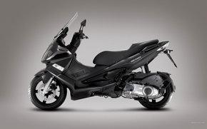 Gilera, Scooter, Nexus 300, Nexus 300 2008, Moto, Motorcycles, moto, motorcycle, motorbike
