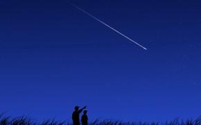 cometa, vettore, notte
