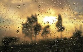 proximidade, vidro, gotas, turvao, chuva, ouro