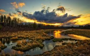clouds, sunset, grass, water, creek