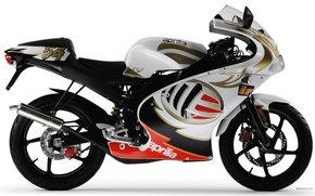 Aprilia, Road, RS 50, RS 50 2005, Moto, Motorcycles, moto, motorcycle, motorbike