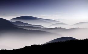 niebla, Montaas, cielo, maana