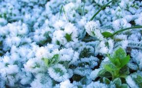 inverno, ghiaccio, neve, impianto