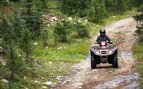 Honda, ATV, Fourtrax Foreman, Fourtrax Foreman 2007, Moto, motocicli, moto, motocicletta, motocicletta