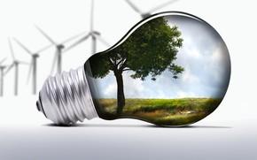 лампочка, природа, ветряки, экология