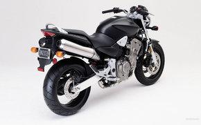 Honda, Sport, CB900F - Hornet - 919, CB900F - Hornet - 919 2002, Moto, Motorcycles, moto, motorcycle, motorbike