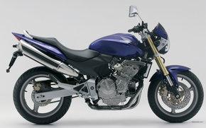 Honda, Sport, CB600F - Hornet - 599, CB600F - Hornet - 599 2006, Moto, Motorcycles, moto, motorcycle, motorbike