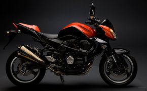 Kawasaki, desnudo, Z1000, Z1000 2009, Moto, Motocicletas, moto, motocicleta, moto