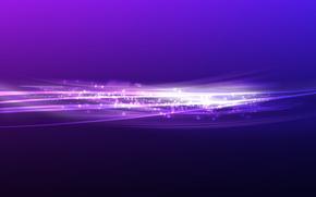 紫, バンド