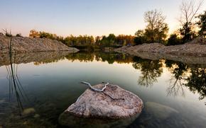 acqua, pietre, alberi