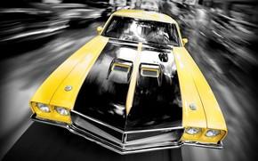 vitesse, machine, jaune