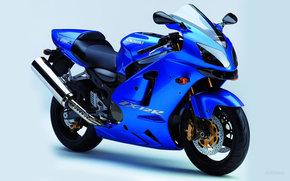 Kawasaki, Ninja, Ninja ZX-12R, ZX-12R Ninja 2005, Moto, motocykle, moto, motocykl, motocykl