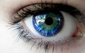 eye, pupil, eyelashes