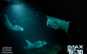 Secrets of the Underwater World 3D, Deep Sea, film, movies