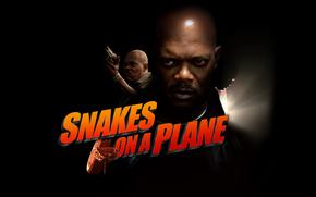 Змеиный полет, Snakes on a Plane, фильм, кино