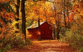 autumn, forest, lodge