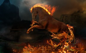 fogo, chama, animal, cavalo