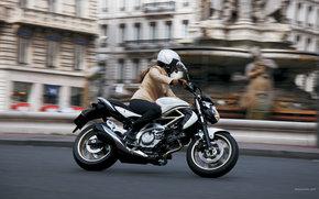 鈴木, 伝統的な, SV-F 650, SV-F 650 2009, モト, オートバイ, モト, オートバイ, オートバイ
