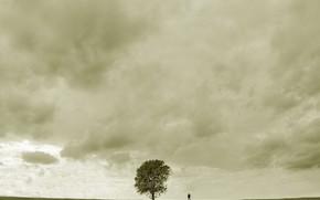 дерево, человек, грусть