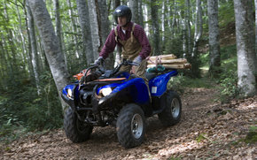 Yamaha, ATV, Grizzly, Grizzly 2007, мото, мотоциклы, moto, motorcycle, motorbike
