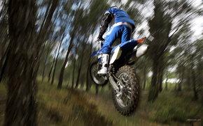 Yamaha, Off-Road, WR450F, WR450F 2008, мото, мотоциклы, moto, motorcycle, motorbike