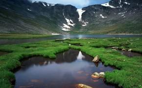 natureza, verduras, rio, vida, Montanhas