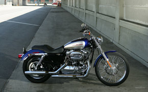 Harley-Davidson, Sportster, XL 1200 C Sportster Custom, XL 1200 C Sportster Custom 2007, Moto, Motorcycles, moto, motorcycle, motorbike