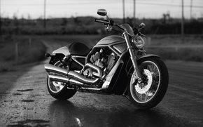 Harley-Davidson, VRSC, VRSCAW V-Rod, VRSCAW V-Rod 2010, Moto, Motorcycles, moto, motorcycle, motorbike