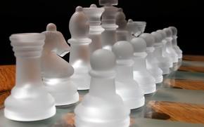 scacchi, stuoia, luce e ombra a scacchi