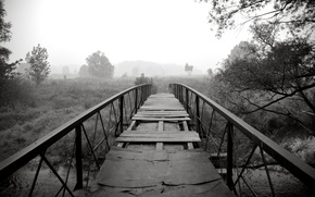 black, bridge, nature