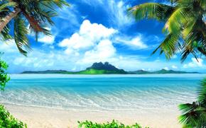 Palms, beach, sea, paradise