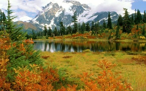 Montanhas, gua, rvore, floresta, rvore, outono