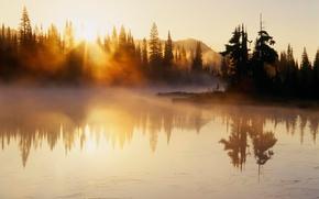 утро, лес, озеро, вода, рассвет, туман