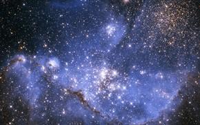 estrellas jvenes, pequeo, Magallanes, nube