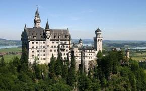 castello, foresta, fiume