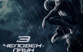 Spider-Man 3: Il nemico nella riflessione, Spider-Man 3, film, film