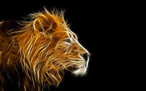 leone, luce, raggi, Photoshop