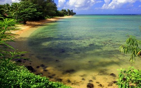 beach, tropics, sand