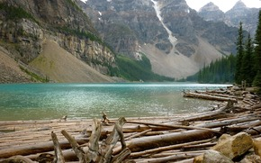 Mountains, rocks, forest, river, crossing, log, felling