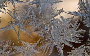 winter, glass, frazil