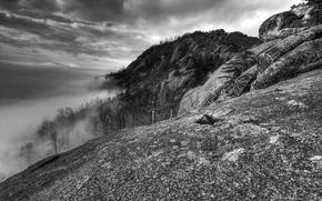 云, 山, 雾, 弗吉尼亚州, 黑与白
