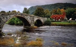 мост, река, дом