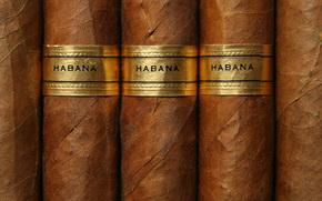 текстуры, сигары, гламур