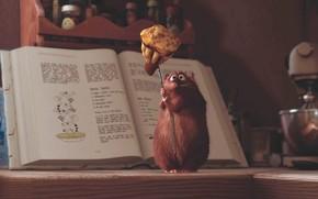 ratatouille, mouse, cartone animato