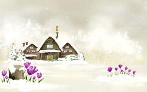 冬, 新年, 白, 住宅
